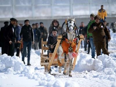 Atlı Kızak Türkiye Şampiyonası, Erzurum'da sona erdi.